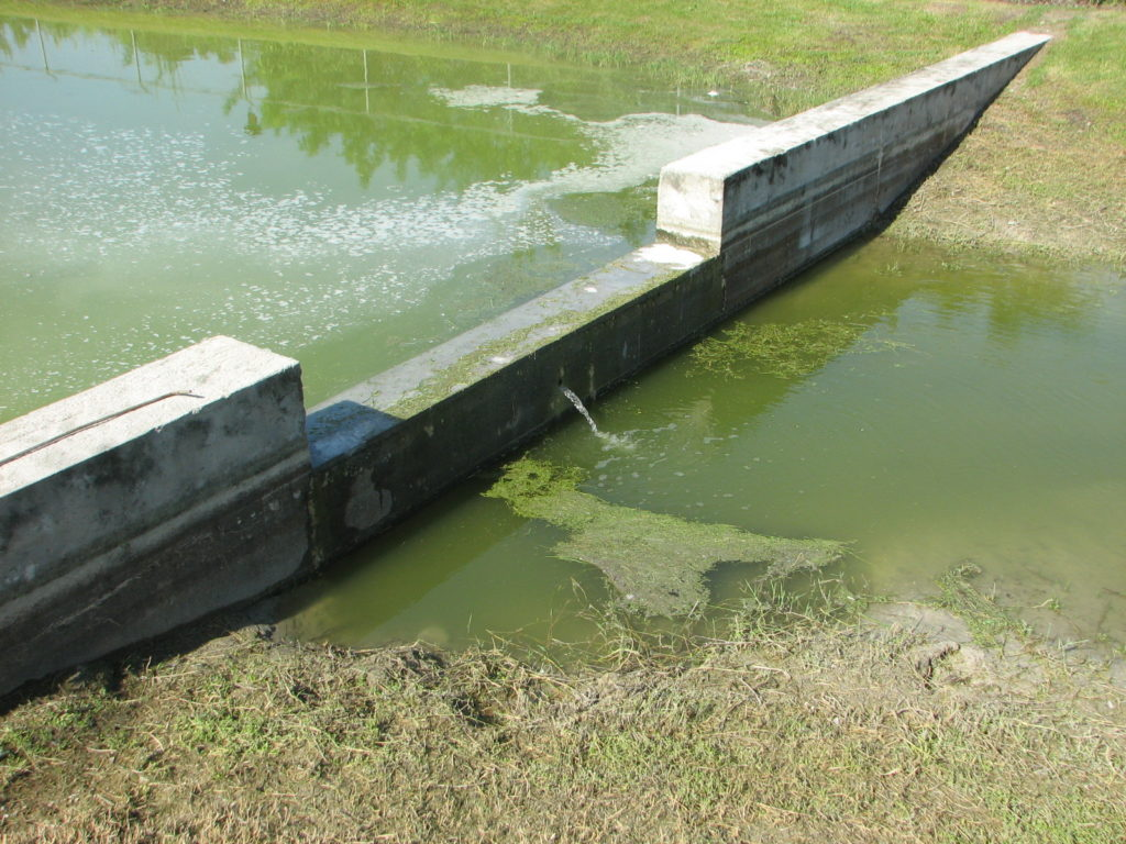 stormwater pollution